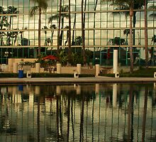 California Reflections by Barbara  Brown
