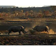 Stand off at dusk Photographic Print