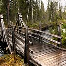 Wooden bridge by Sandra Kemppainen