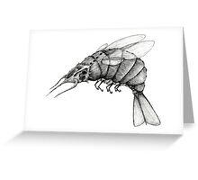 space shrimp Greeting Card