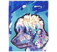 Standard Poodle Dog Bright colorful pop dog art Poster