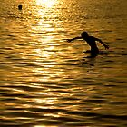 Swim at Dusk by AmyRalston