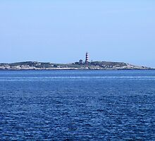 Sambro Island Light by George Cousins
