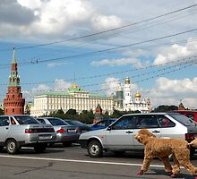 Moscow by Igor Zenin