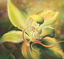 The Orchid by Anna Miarczynska