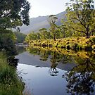 Thredbo River by Harry Oldmeadow