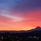 Portland Oregon Sunrise by Edith Farrell