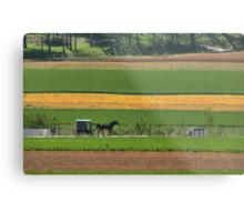 Amish Farmland Metal Print