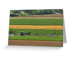 Amish Farmland Greeting Card