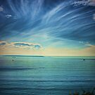 Pacific Skies by Barbara  Brown