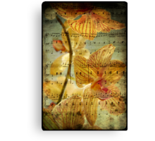 The Beauty of Music............. Canvas Print