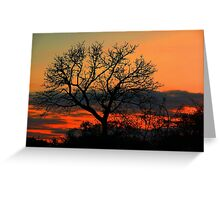 A Typical African Sunset! Greeting Card
