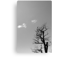 Dead Tree and Two Clouds BW Canvas Print
