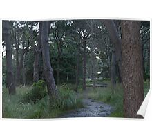 Forest Path Poster