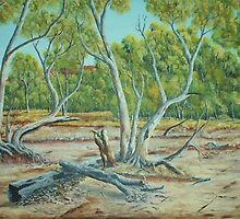 Red river Gums by steve  Johns