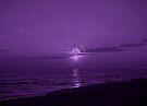 Sunset in Purple 2 by Sandy Keeton