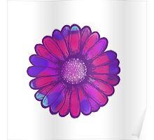 Colorful Daisy Poster