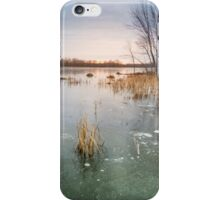 Beaver Place iPhone Case/Skin