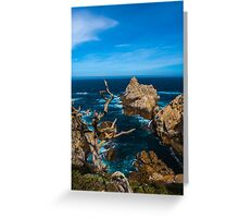 Big Sur Point Lobos Looking North Greeting Card