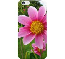 A Sunny Corner of a Tyneside Garden iPhone Case/Skin