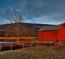 Early Evening Light by Lois  Bryan