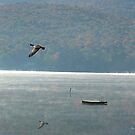 Goose Over Stinson Lake by Wayne King