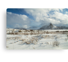 The Land of snow Canvas Print