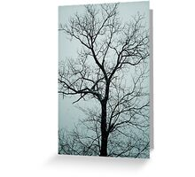 Lonely Tree Waiting For Spring   Center Moriches, New York  Greeting Card