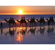 Cable Beach Camels At Sunset Photographic Print