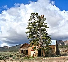 Leanin' Tree House - Cherry Creek, NV by Arla M. Ruggles