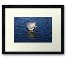 Goose Yoga Framed Print