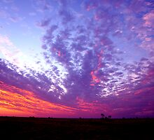 Wild sky over the land Winton, Qld. Australia by Marilyn Baldey