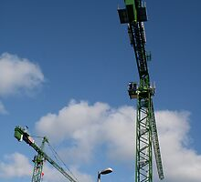 Two Cranes and a Lampost by Iani