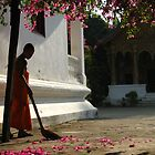 A Monk Sweeps Bougainvillea Leaves in Luang Prabang, Laos by MeBoRe