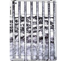 Snow on a Snow Fence Patterns Contrasts iPad Case/Skin