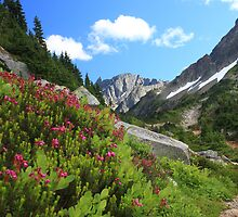 Cascade Pass by Robert Yone