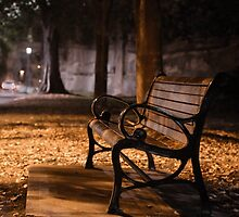 Bench by the road  by franceslewis