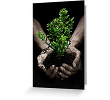 Tree in Hands Greeting Card