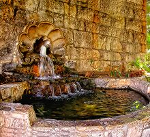 Riverwalk Fountain by becky-lou