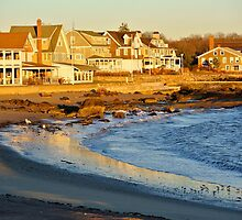 Houses on the shore by sbackman