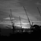 Cranes At Sun Set by Neil Mouat