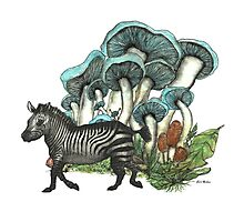 Dancing Zebra Losts in Blue Dizzy Fungi Forest Photographic Print