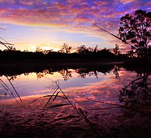 River Murray Glory by Steve Chapple