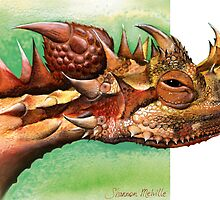Thorny Devil head by Shannon Melville