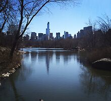 Central Park, NYC by Lagoldberg28