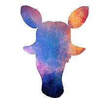 Mangle Space Silhouette Photographic Print