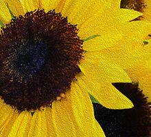 Sun Flower by Kathryn Potempski