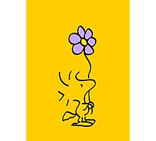 Woodstock with Flower Photographic Print