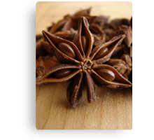 Anise Star Canvas Print