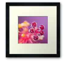 Thirst. Framed Print